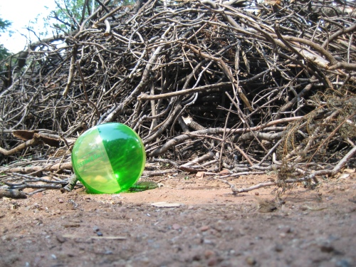 If toy balls were left behind in the Rapture...