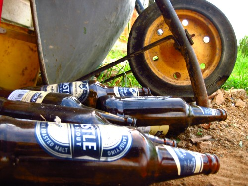 Old beer bottles making an artistic statement.