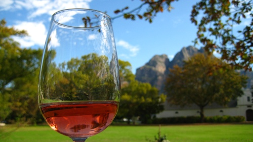 One Shiraz Rose + A stunning autumn day in Stellenbosch, please.