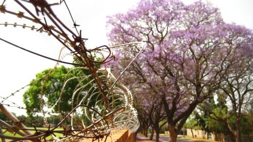 Hoerskool Pretoria Noord.